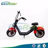 Roller Halei Roller des EWG-Bescheinigung-elektrischer Roller-1200W Citycoco mit Removeable Batterie