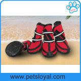 夏の防水中・大型の飼い犬は犬のブートに蹄鉄を打つ