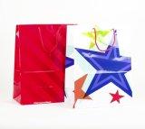 Bolsas de papel, bolsos de pila de discos, bolsos del regalo, bolsas de papel de Kraft, bolsos de compras, venta de la fábrica