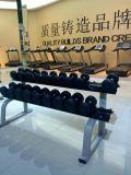 Equipo de la gimnasia del estante de la pesa de gimnasia/máquina de la aptitud
