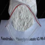 Npp-preiswerterer Steroid roher PuderNandrolone Phenylpropionate für Bodybuilder