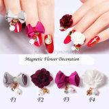 Clavar los accesorios magnéticos mágicos de la belleza de la flor de la decoración de la aleación del arte 3D (D86)