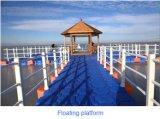Piattaforma del pontone di galleggiamento fatta in Cina
