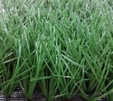 hierba sintetizada de la prueba ULTRAVIOLETA de 50m m para el balompié