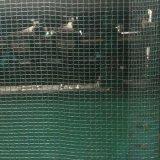 Rete di sicurezza della costruzione dell'HDPE, rete anti-grandine per le piante e frutta