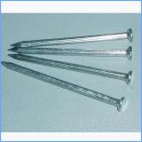 広州の供給の構築の共通の鋼鉄釘