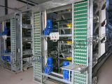 Três sistema automático cheio da gaiola da camada da capacidade das séries 96
