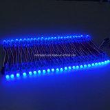 Della striscia dell'inclusione LED alimentazione l'indicatore luminoso di striscia di 5050 12V LED IP68 RGB