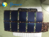 60W de Zonnepanelen van Portable/Charger