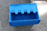 Casella di memoria di plastica pieghevole
