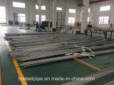 De Naadloze Pijp van het Roestvrij staal van ASME SA213/SA789 Uns S32750