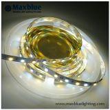 Luz de tira dual del CCT Adjusble LED del blanco 5050