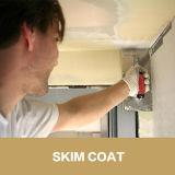 El Rd pulveriza los polímeros para la adición de la pintura de látex