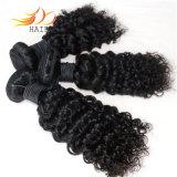 卸売100%年のRemyの毛のジェリーのカールのインドにバージンの毛の編むこと