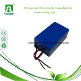 48V 20ah LiFePO4 Batterie-Satz mit Soem für elektrischen Roller