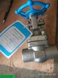 API 800lb válvula de puerta del acero inoxidable F316L de 3/4 pulgada con Stelite Sw/NPT