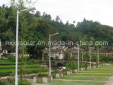 Qualitäts-Fabrik-Preis 5W-120W alle in Onr Solar-LED Garten-Licht-Solarstraßenlaterne