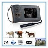 Equipamento profissional do ultra-som da exploração agrícola para a inspeção do veterinário