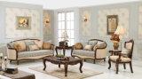 Sofà americano dello strato classico del tessuto con il tavolino da salotto impostato per il salone