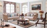 木製のアメリカの標準的なソファのLoveseatアーム椅子が付いている家具製造販売業ファブリックソファー
