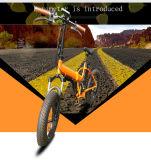 Neues Modell ein Jahr-Garantie-kleines fettes Rad, das elektrisches Fahrrad faltet