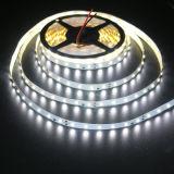 SMD LED Strip 5730 para revendedores