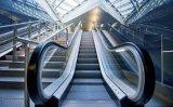 Precio resistente de las escaleras móviles del transporte público
