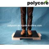 Poids léger Waterproof Honeycomb Van Panel de dureté