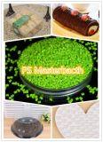 Categoría alimenticia de Polystyrene/PS Masterbatch
