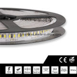 SMD 3014 120leds / M de un solo color tira de LED de luz