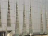 Gordijngevel van het Comité van de Honingraat van het aluminium de Buiten