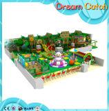 OEM Prijs van de Speelplaats Playgroundr van het Park van het Vermaak de Binnen
