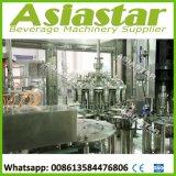 Chaîne de production chaude liquide mis en bouteille par animal familier de boissons de machine de remplissage de jus