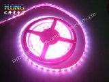Luces de tira de la alta calidad 8.64W LED de DC12V