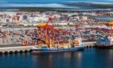 Globale Container die Logistische Verzending verschepen