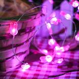Luz justa da corda do reflexo romântico cor-de-rosa do casamento da decoração do feriado do coelho