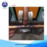 Horno de inducción al por mayor para el hierro de fusión