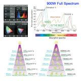 A planta do diodo emissor de luz de Shenzhen Ce/Rohs cresce 72PCS/LED5w claro para a planta interna