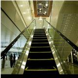 800mm SS Jobstepp-Passagier-Einkaufszentrum-Rolltreppe
