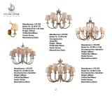 De klassieke Lamp van de Tegenhanger van het Ijzer met LEIDENE Bol (sl2016-6)