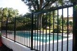 Heißes Verkaufs-modernes einfaches Puder-überzogener bearbeitetes Eisen-Pool-Zaun