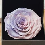 창조적인 선물 및 훈장을%s Ivenran 별자리 상자 신선한 꽃