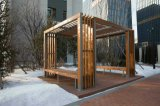 Banc neuf de jardin de type de matériel de forme physique de sûreté