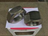 Roestvrij staal 304 de HoofdNoot van Hexuitdraai 316 met Goede Kwaliteit