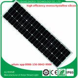 Indicatore luminoso solare di disegno IP65 100W LED per il giardino