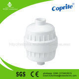 Le filtre de douche de filtre de taraud le plus neuf pour l'eau