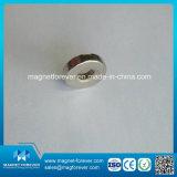 Magneet van het Neodymium van de Magneet NdFeB van de Zeldzame aarde van de douane de Sterke