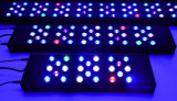 "16 ""Marine LED Aquarium Light avec 4 canaux intelligents"