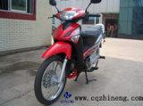 Moto (ZN125-5)