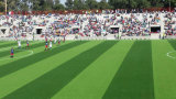 Herbe artificielle du football recyclable, herbe non supplémentaire (V30-R)